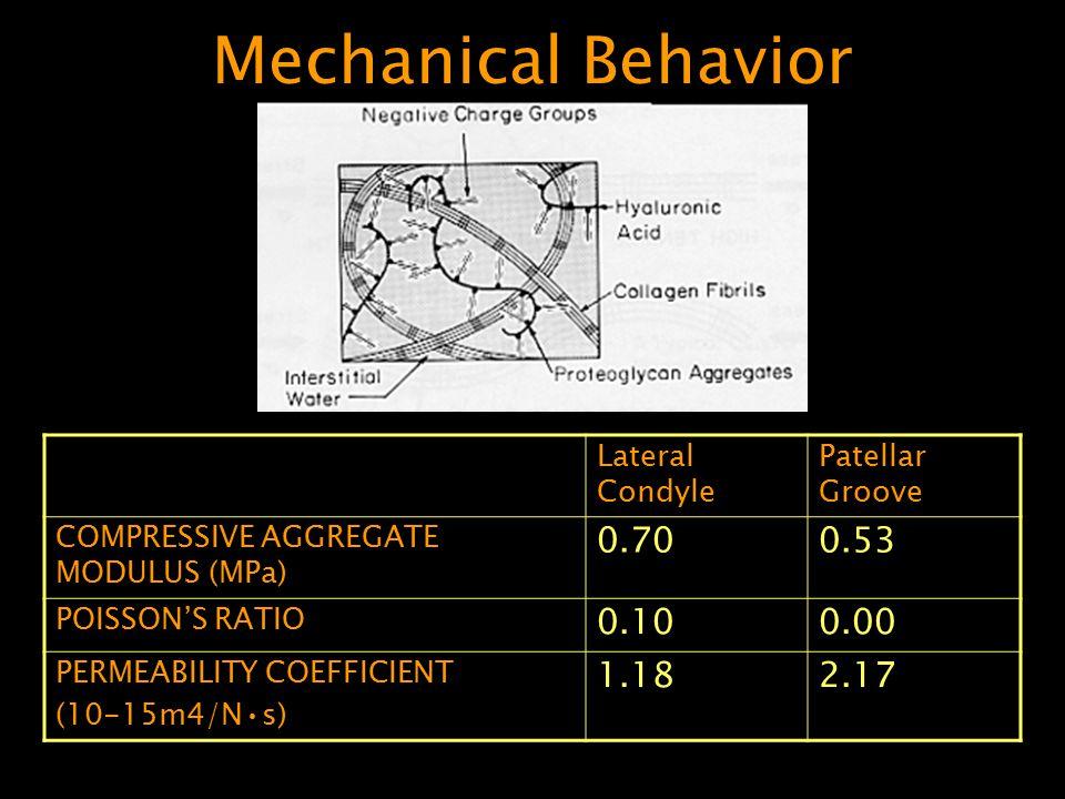 Mechanical Behavior 0.70 0.53 0.10 0.00 1.18 2.17 Lateral Condyle