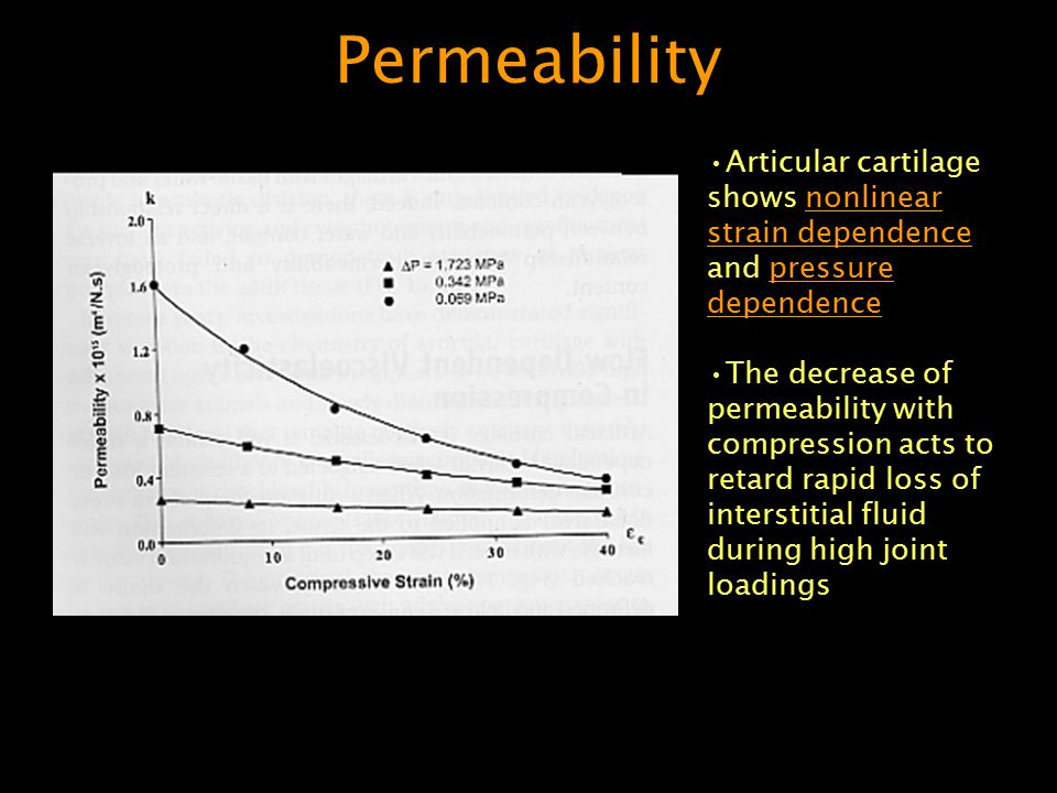Permeability Articular cartilage shows nonlinear strain dependence and pressure dependence.