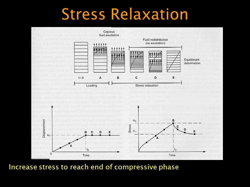Stress Relaxation Increase stress to reach end of compressive phase