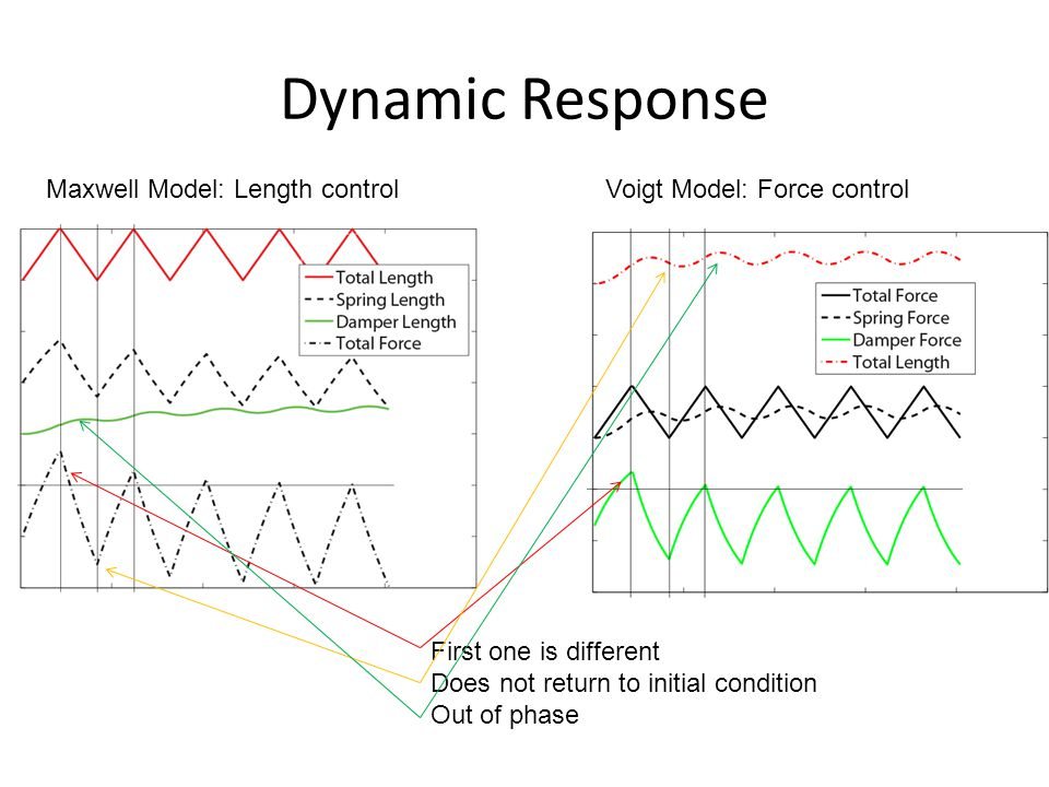 Dynamic Response Maxwell Model: Length control