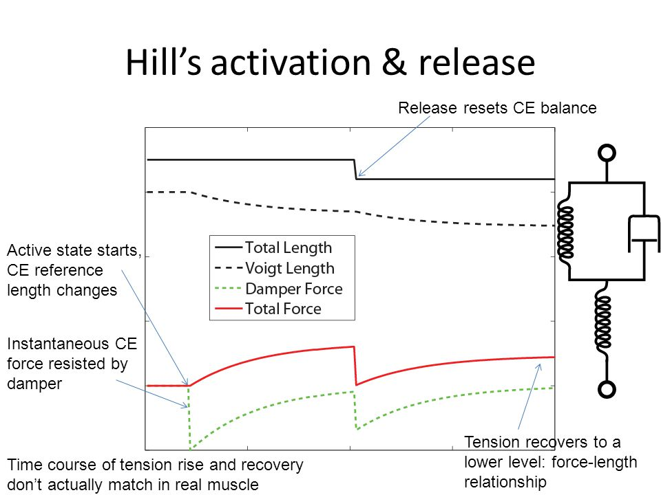 Hill's activation & release