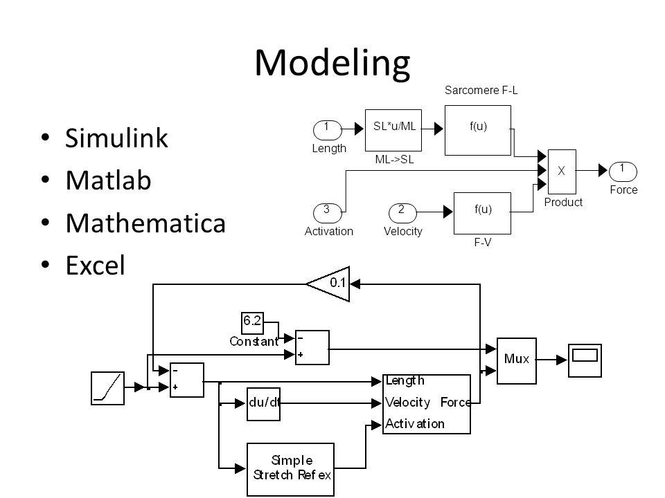 Modeling Simulink Matlab Mathematica Excel 1 Force f(u) Sarcomere F-L