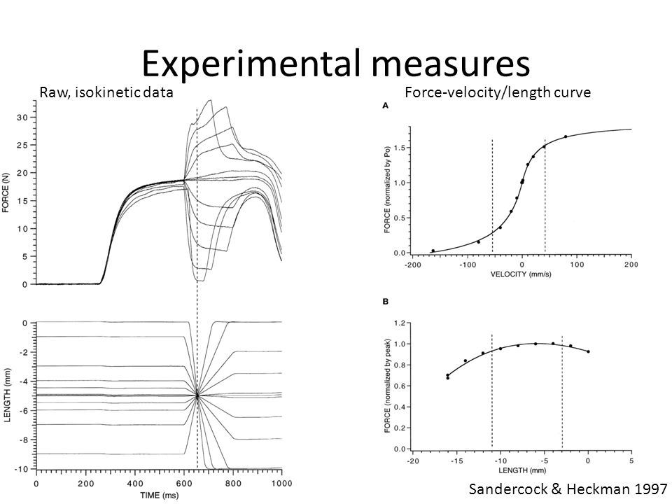 Experimental measures