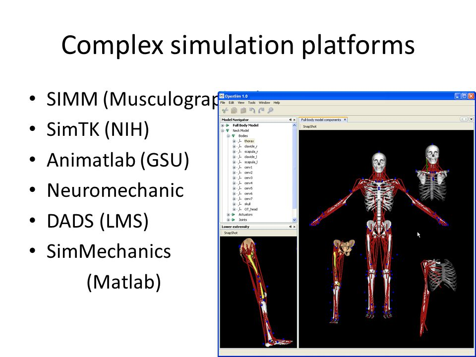 Complex simulation platforms