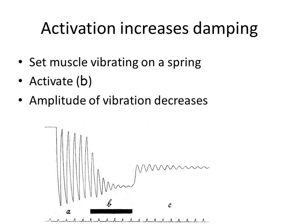 Activation increases damping