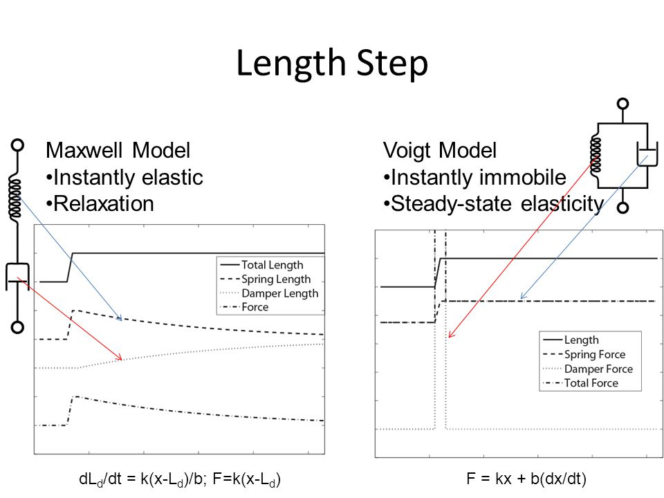 Length Step Maxwell Model Instantly elastic Relaxation Voigt Model