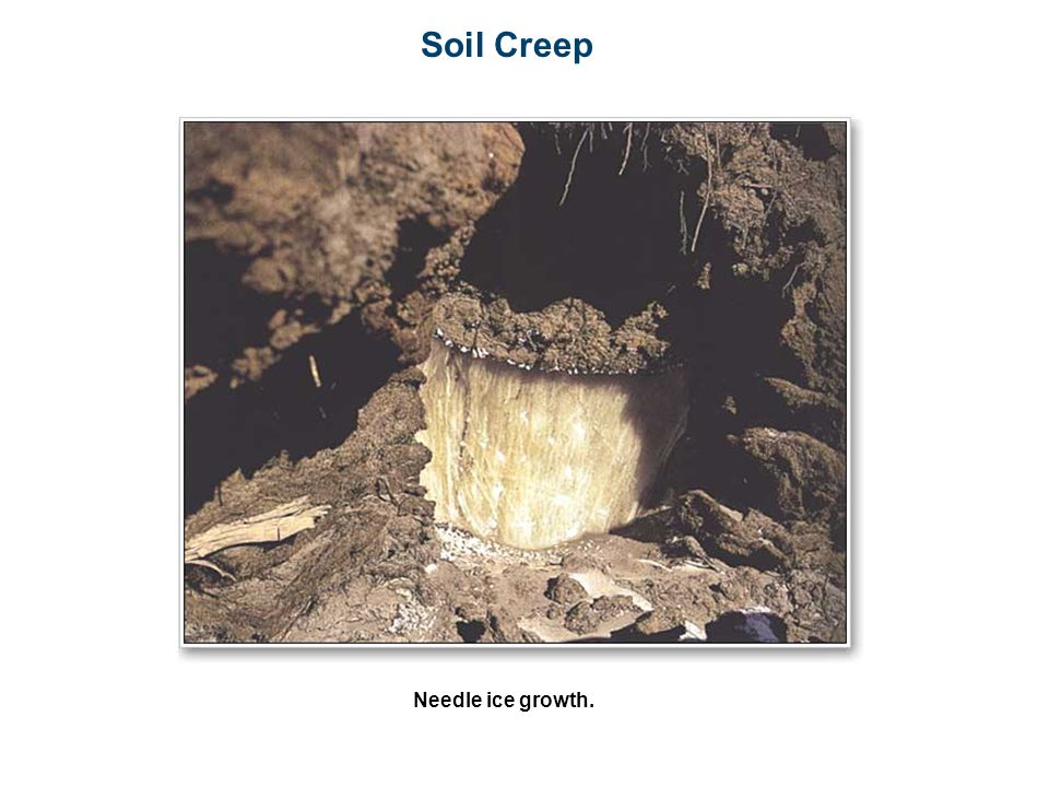 Soil Creep Needle ice growth.