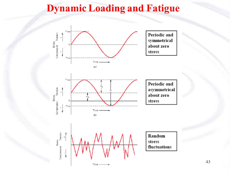 Dynamic Loading and Fatigue