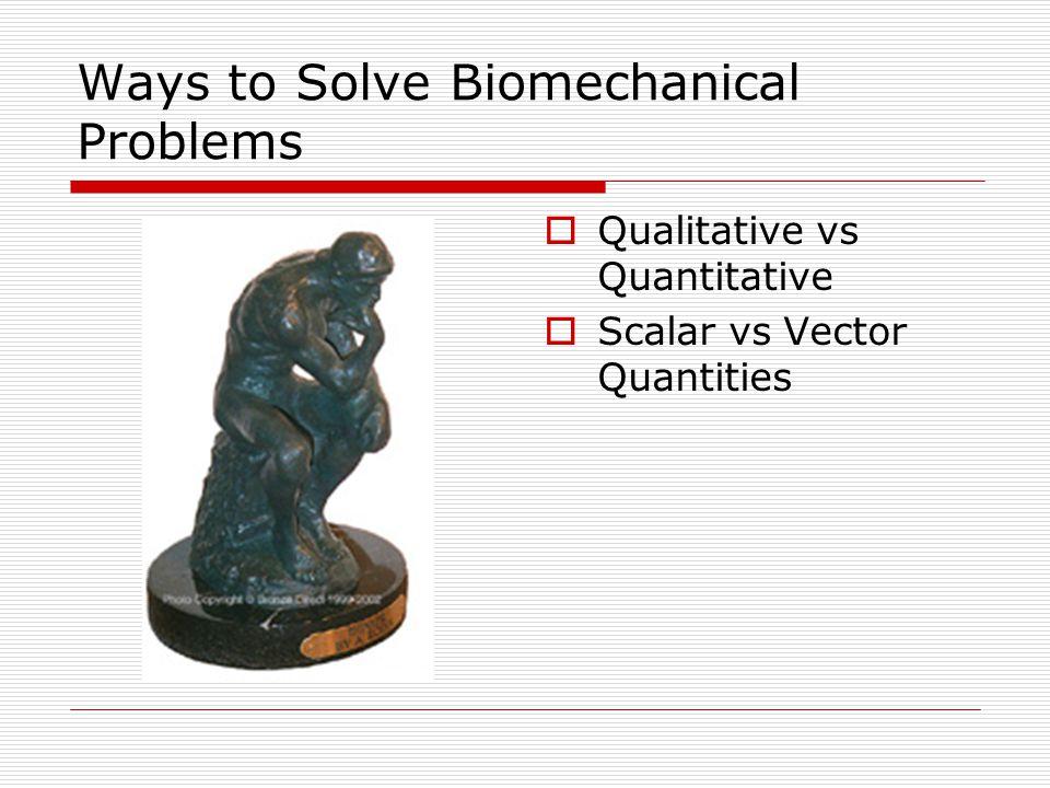 Ways to Solve Biomechanical Problems