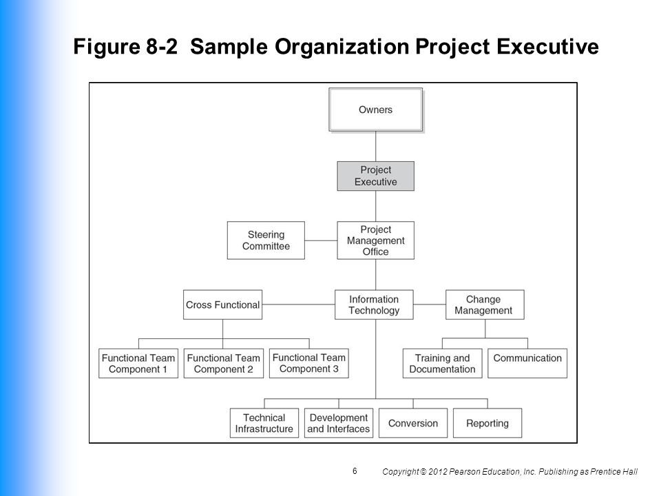 Figure 8-2 Sample Organization Project Executive