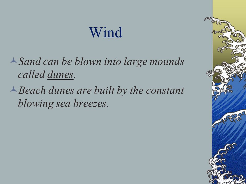 Wind Sand can be blown into large mounds called dunes.