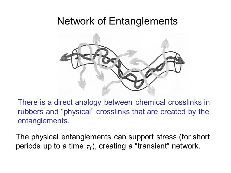 Network of Entanglements