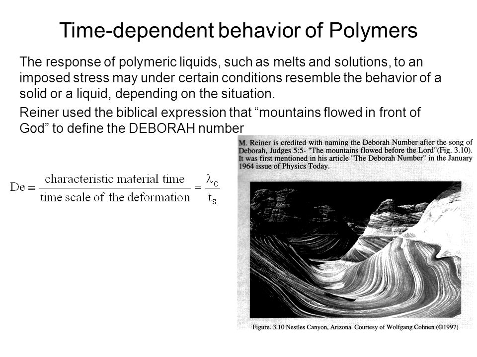 Time-dependent behavior of Polymers