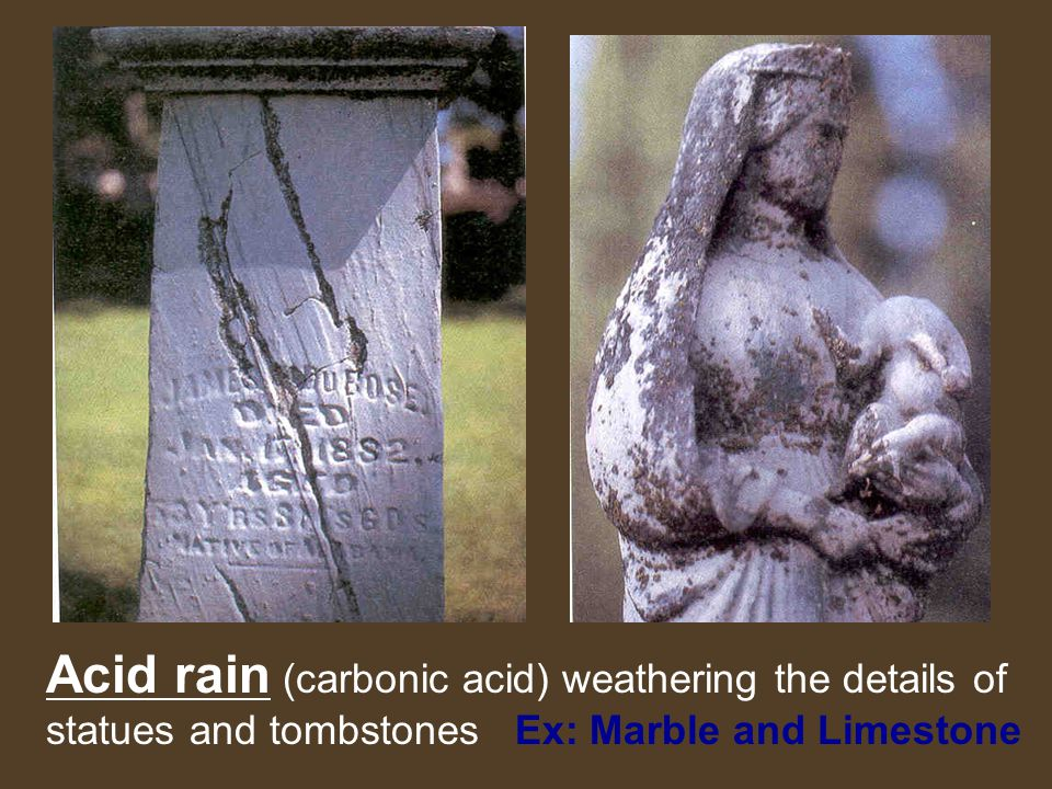Acid rain (carbonic acid) weathering the details of statues and tombstones Ex: Marble and Limestone