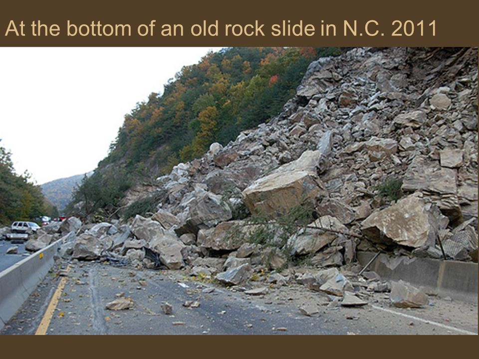 At the bottom of an old rock slide in N.C. 2011