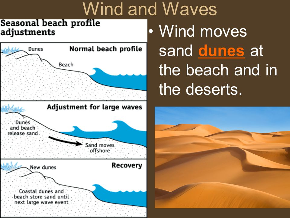 Wind and Waves Wind moves sand dunes at the beach and in the deserts.