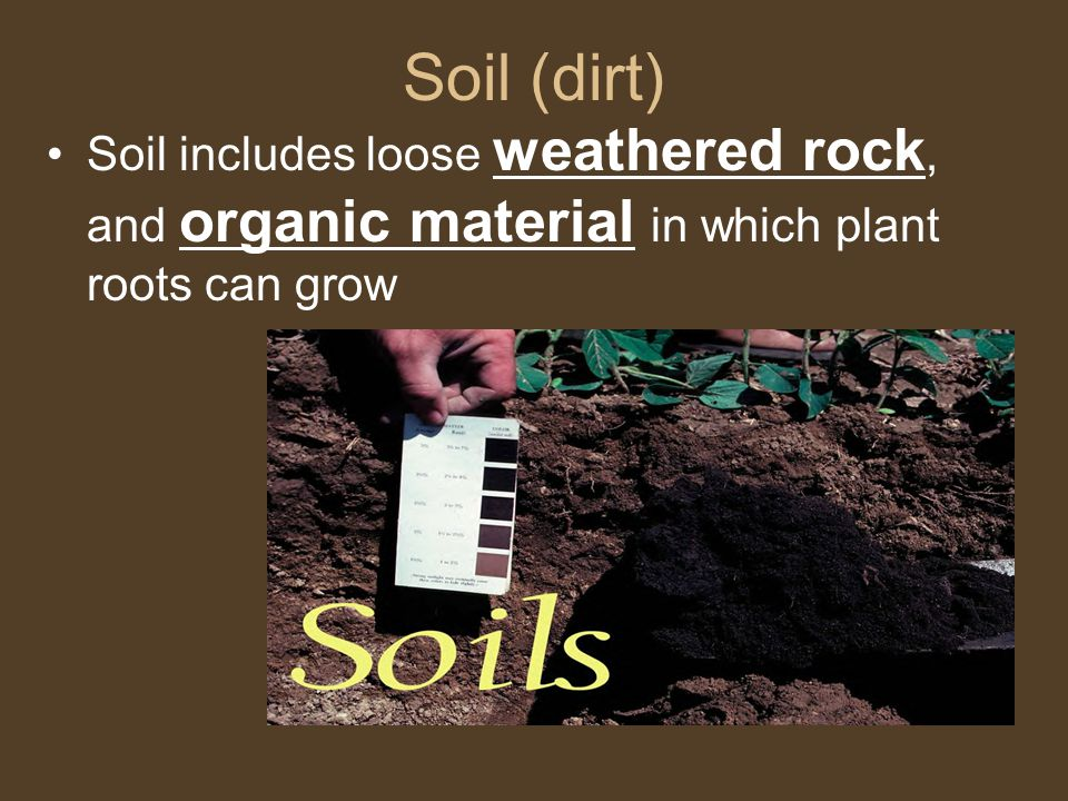 Soil (dirt) Soil includes loose weathered rock, and organic material in which plant roots can grow