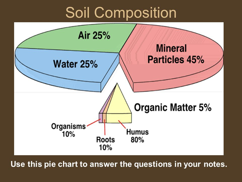 Soil Composition Use this pie chart to answer the questions in your notes.