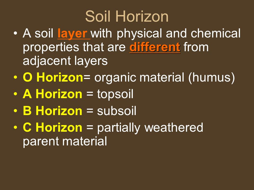 Soil Horizon A soil layer with physical and chemical properties that are different from adjacent layers.