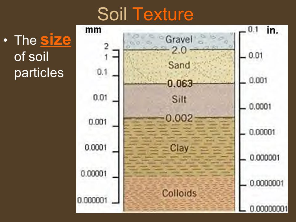 Soil Texture The size of soil particles