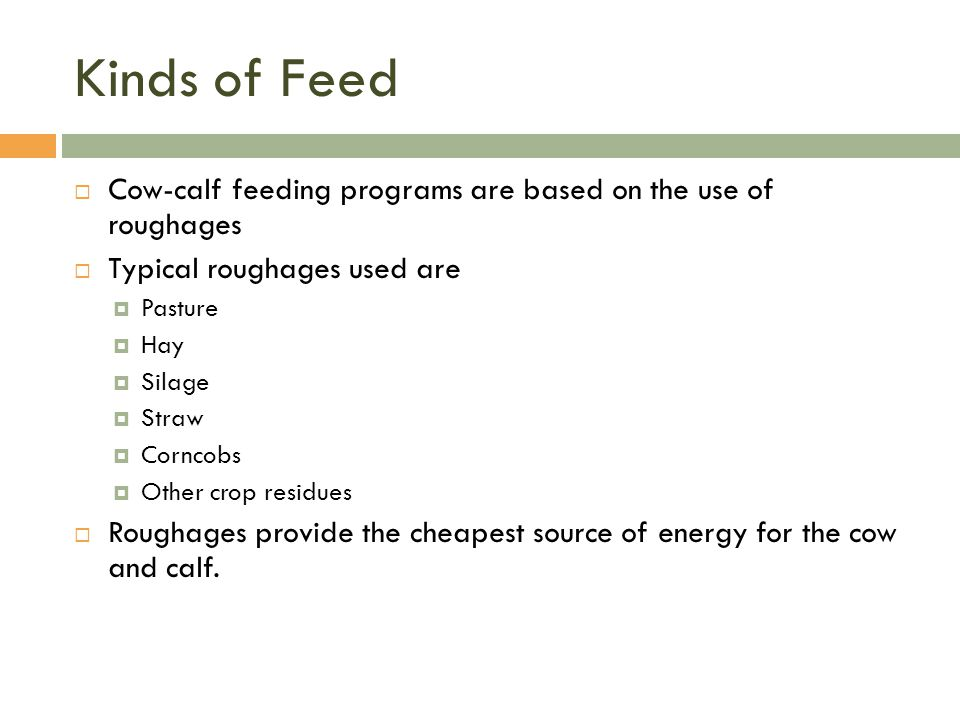 Kinds of Feed Cow-calf feeding programs are based on the use of roughages. Typical roughages used are.