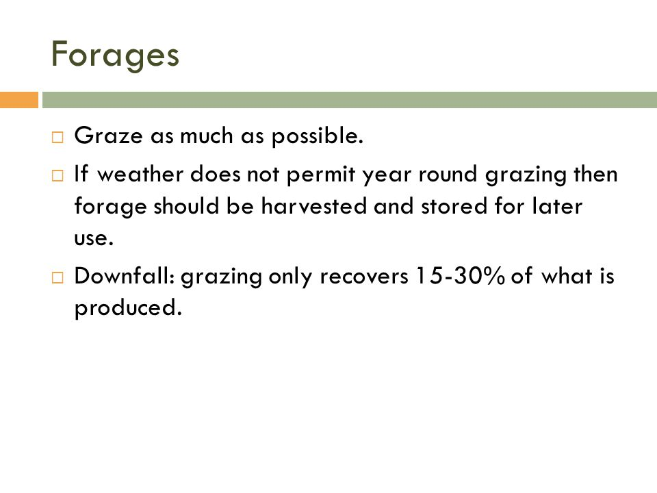 Forages Graze as much as possible.