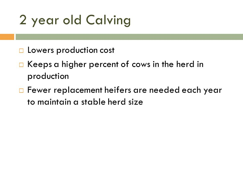 2 year old Calving Lowers production cost