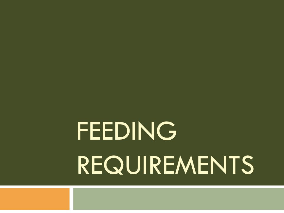Feeding Requirements