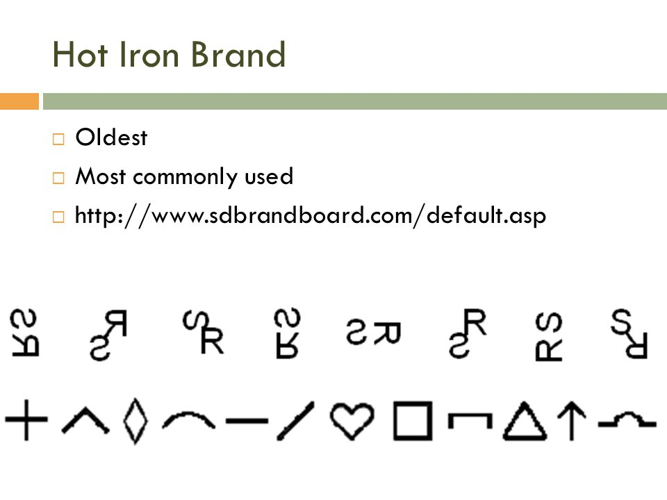 Hot Iron Brand Oldest Most commonly used
