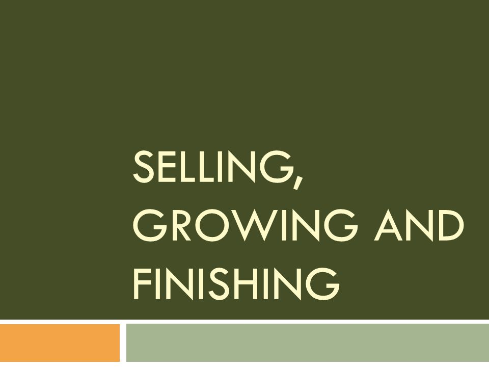 Selling, Growing and Finishing