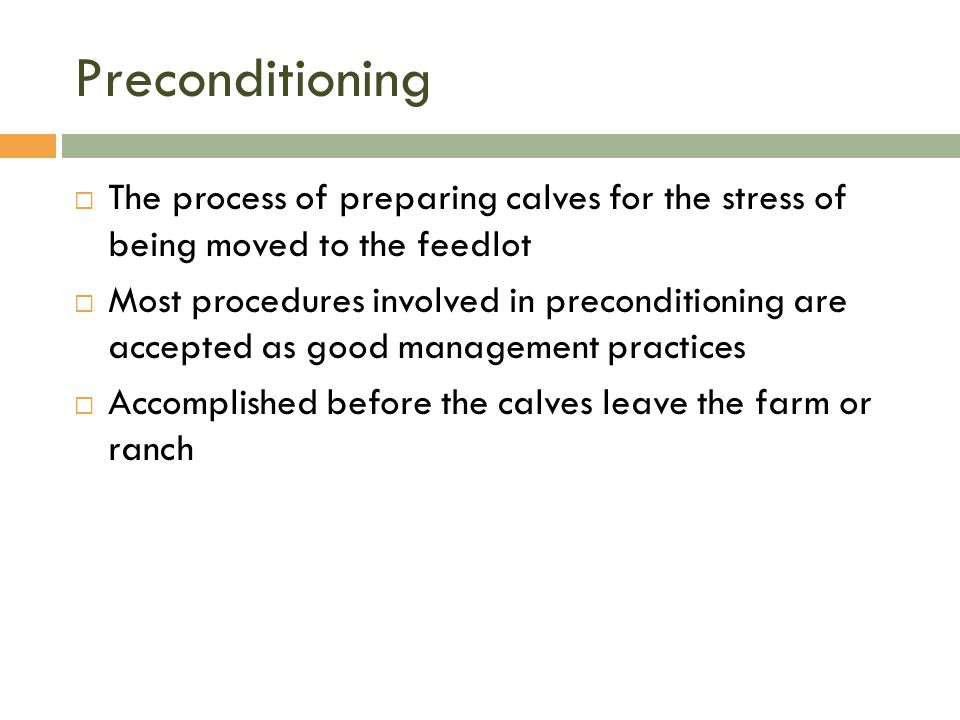Preconditioning The process of preparing calves for the stress of being moved to the feedlot.