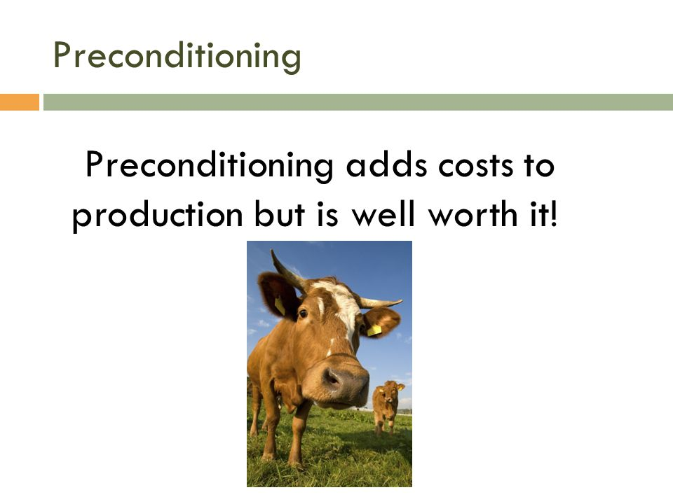 Preconditioning adds costs to production but is well worth it!