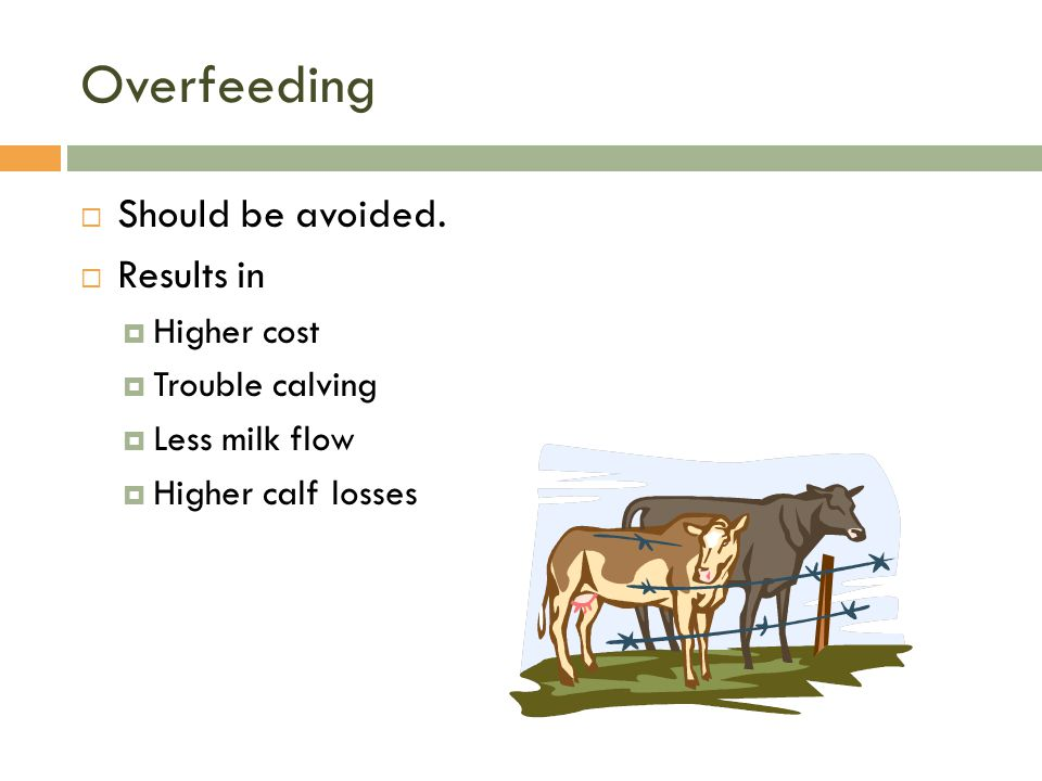 Overfeeding Should be avoided. Results in Higher cost Trouble calving
