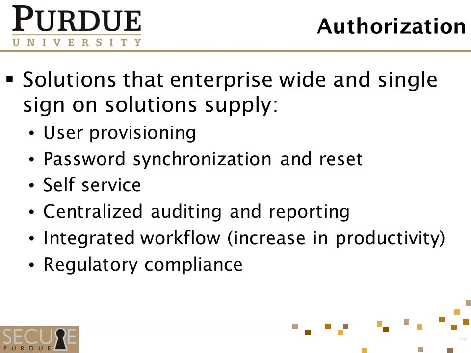 Solutions that enterprise wide and single sign on solutions supply: