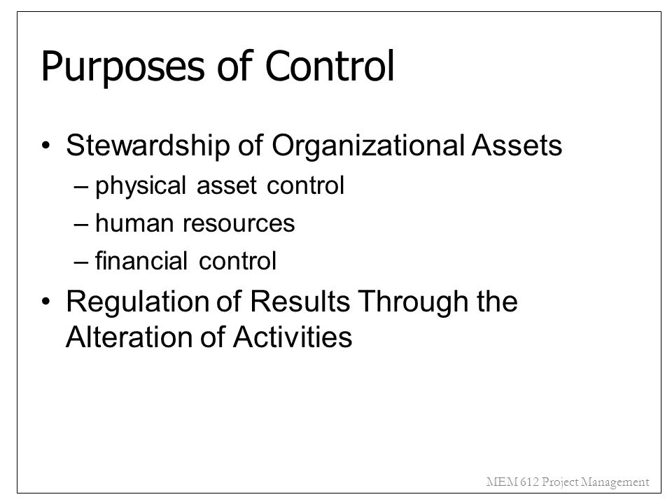 Purposes of Control Stewardship of Organizational Assets