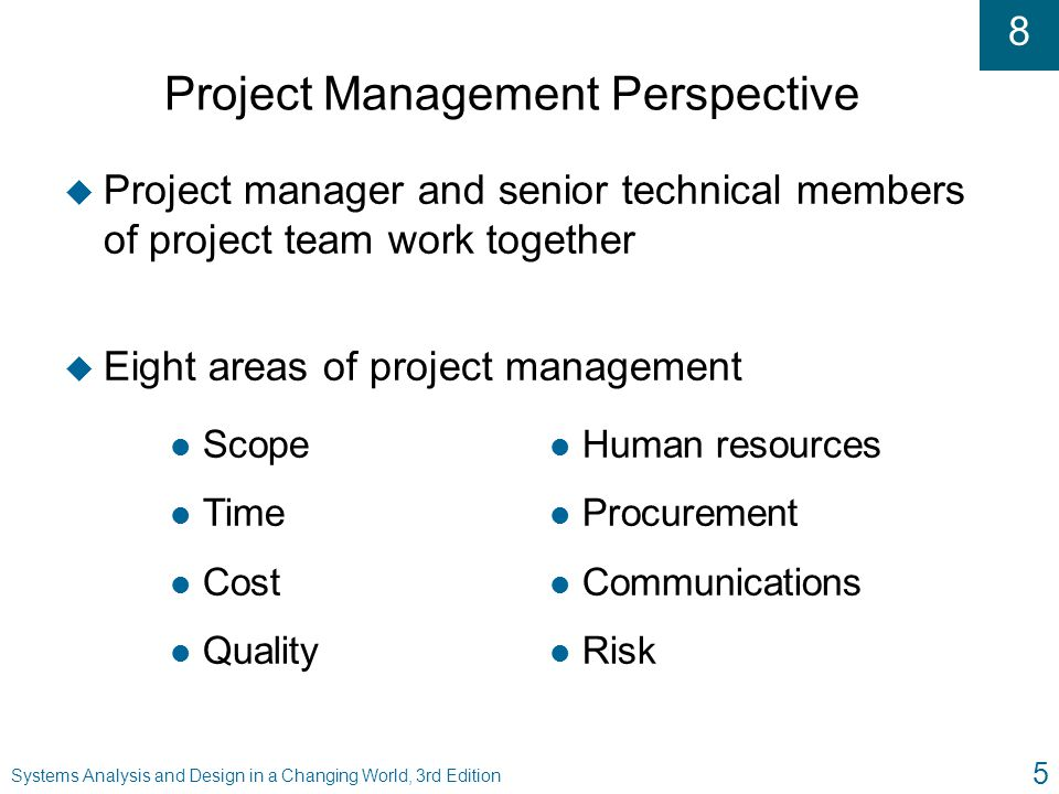 Project Management Perspective