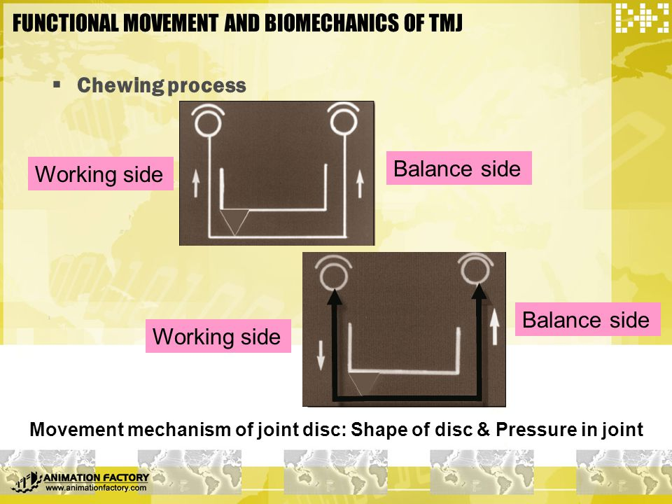 FUNCTIONAL MOVEMENT AND BIOMECHANICS OF TMJ