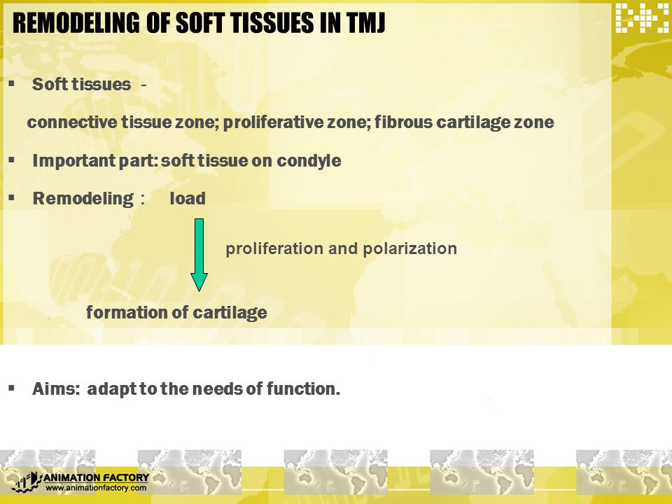 REMODELING OF SOFT TISSUES IN TMJ