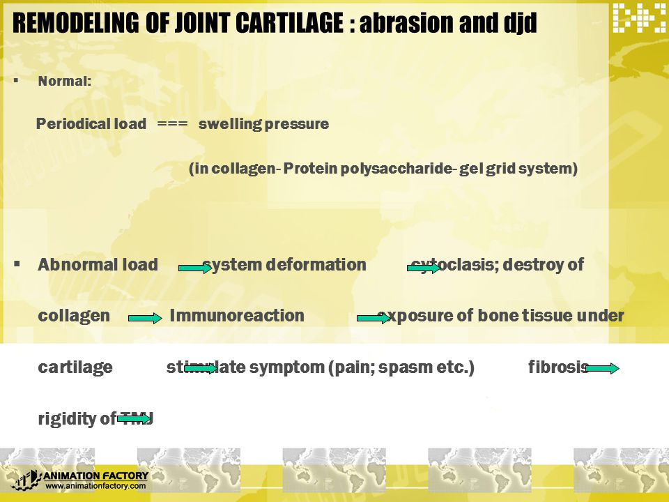 REMODELING OF JOINT CARTILAGE : abrasion and djd
