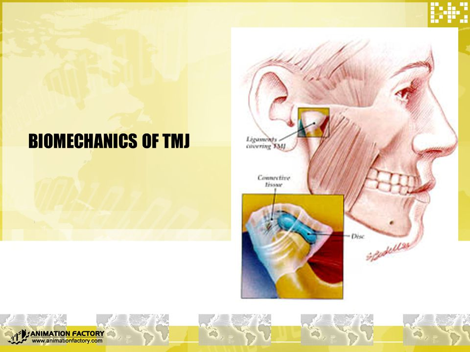 BIOMECHANICS OF TMJ