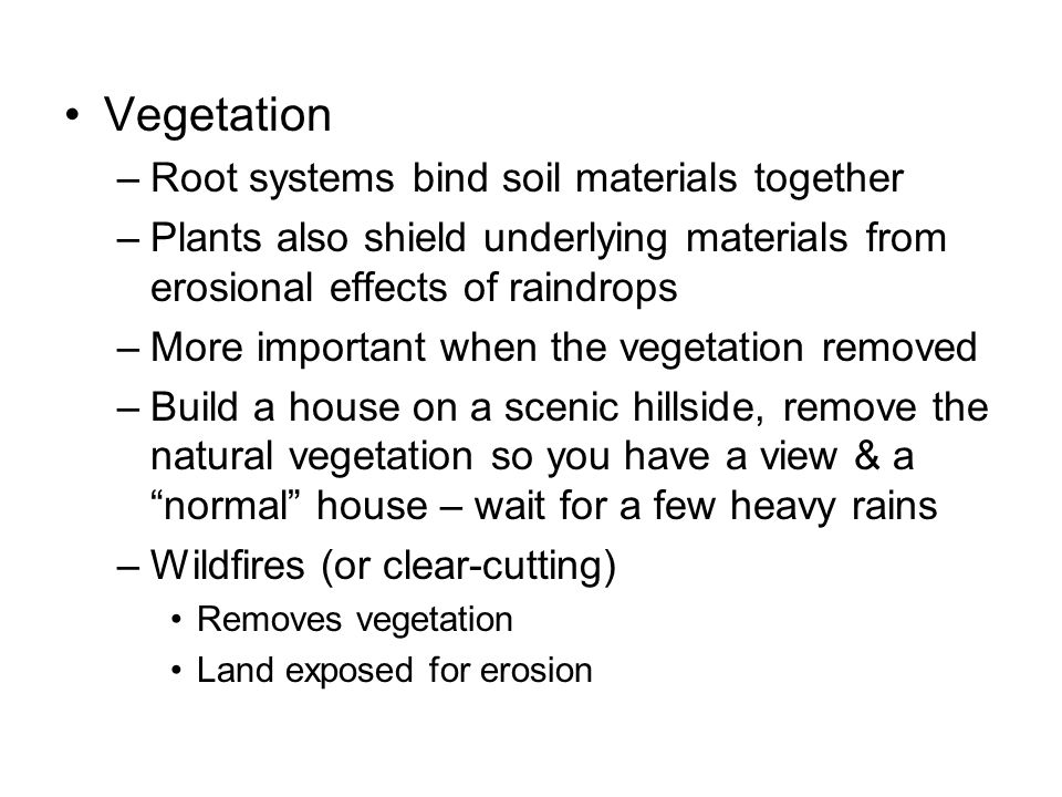 Vegetation Root systems bind soil materials together