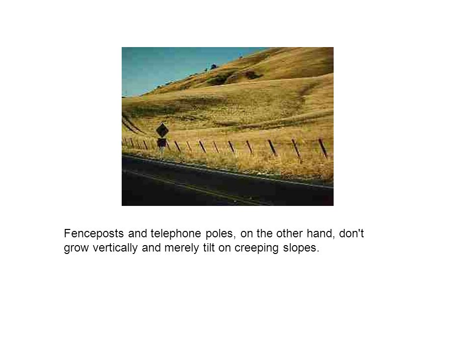 Fenceposts and telephone poles, on the other hand, don t grow vertically and merely tilt on creeping slopes.