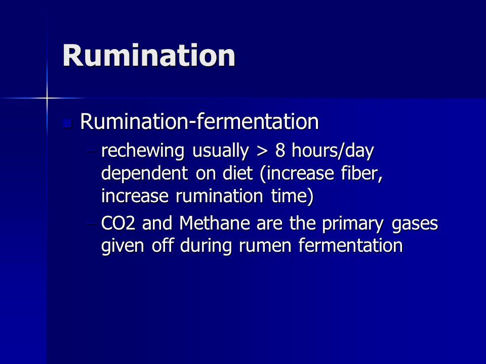 Rumination Rumination-fermentation