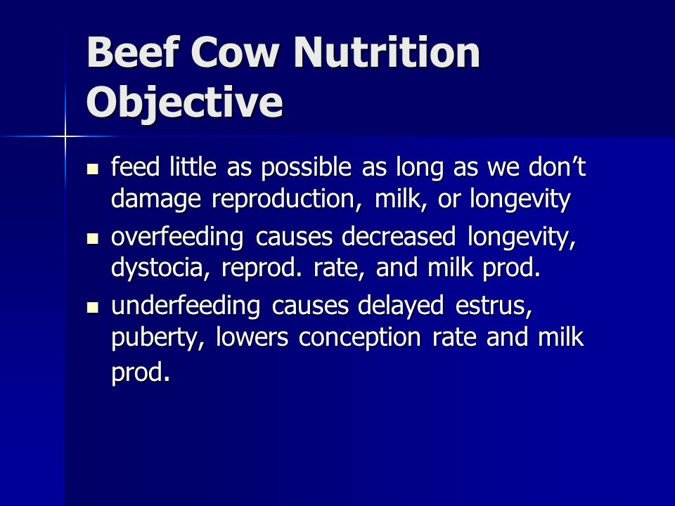 Beef Cow Nutrition Objective