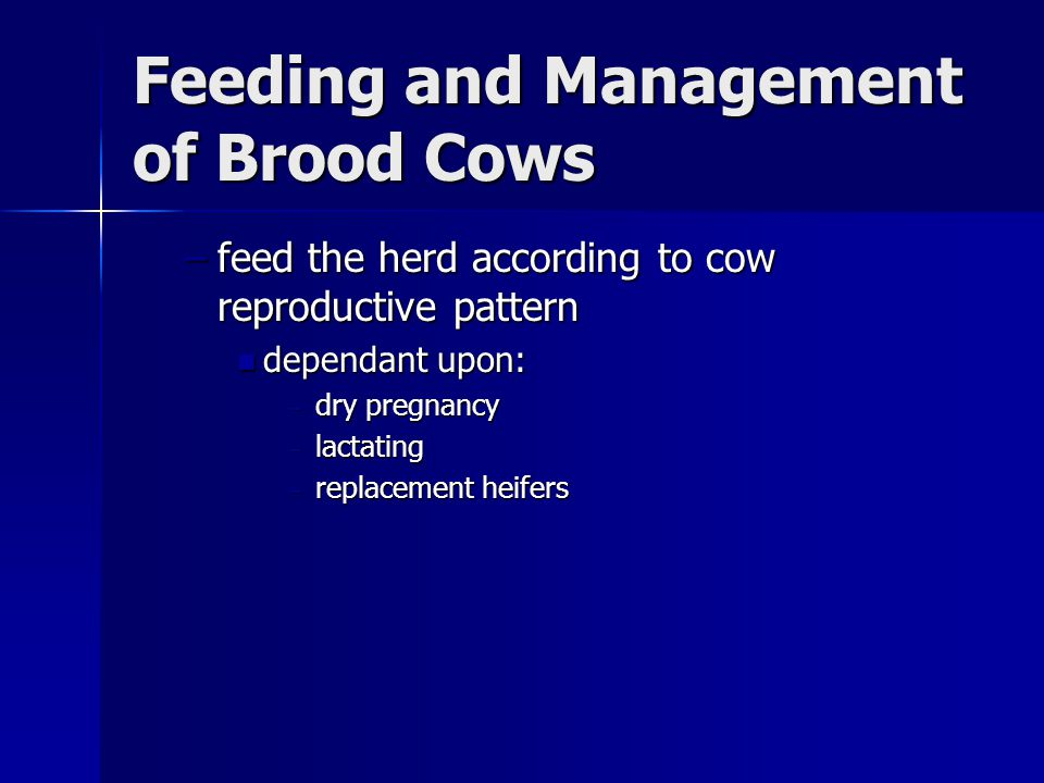 Feeding and Management of Brood Cows
