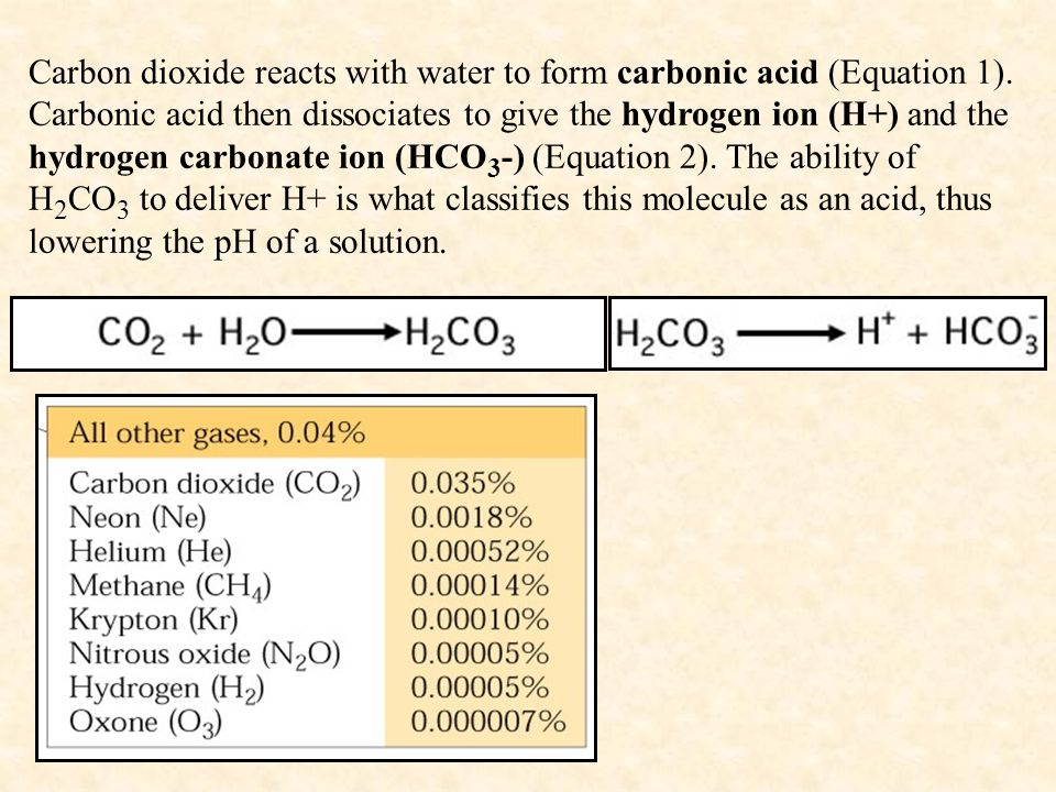Carbon dioxide reacts with water to form carbonic acid (Equation 1)