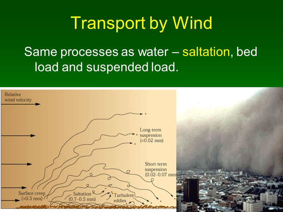 Transport by Wind Same processes as water – saltation, bed load and suspended load.
