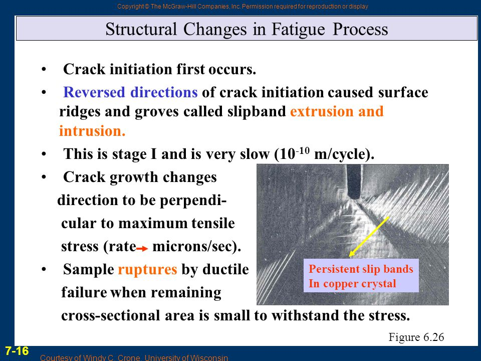 Structural Changes in Fatigue Process
