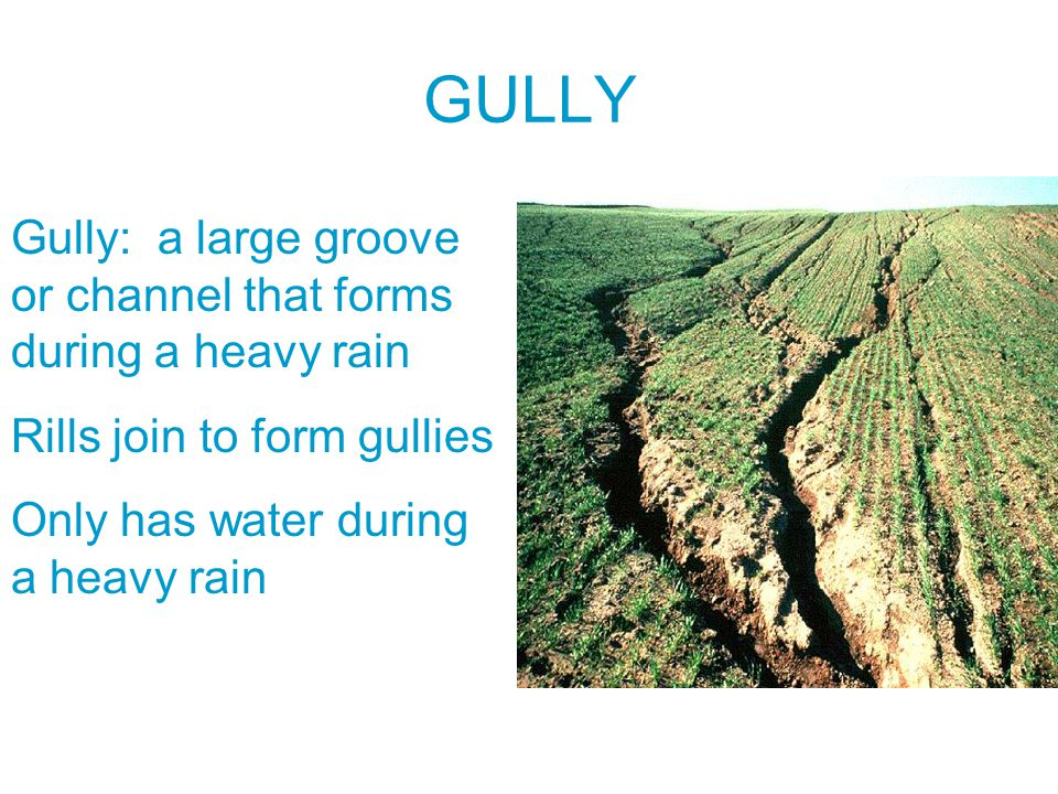 GULLY Gully: a large groove or channel that forms during a heavy rain