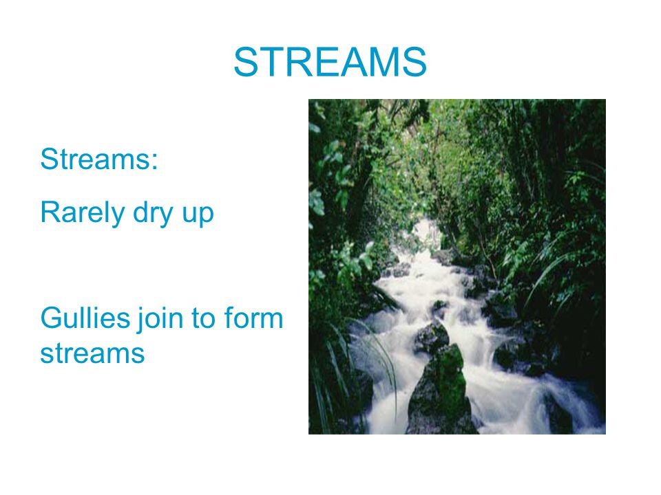 STREAMS Streams: Rarely dry up Gullies join to form streams